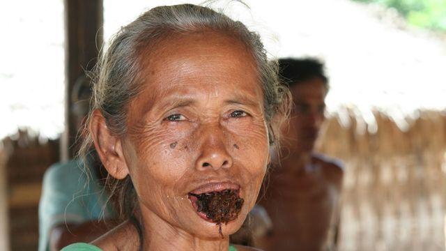 Dampak Mengunyah Tembakau pada Kesehatan Gigi dan Mulut (Ralf Liebhold/Shutterstock)