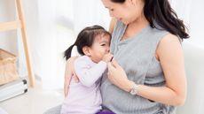 Nutrisi Bagi Ibu Hamil yang Sedang Menyusui (all_about_people/Shutterstock)