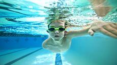 Jangan Dilakukan! Ini Bahaya Makan sambil Berenang! (John-Wollwerth/Shutterstock)