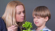 Bolehkah Orang Tua Memaksa Anak untuk Diet? (vesna-cvorovic/Shutterstock)