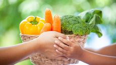 Catat, 5 Makanan Ini Penting untuk Tumbuh Kembang Anak (A3pfamily/Shutterstock)