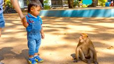 Tips agar si Kecil Terhindar dari Cacar Monyet (KhanunHaHa/Shutterstock)