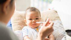 Jadwal Makan si Kecil Sesuai Perkembangan Usia (Happybas/Shutterstock)