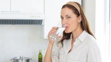 Selain Air Putih, 3 Minuman Ini Aman untuk Penderita Diabetes (ESB Professional/Shutterstock)