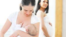 Perbedaan Kebutuhan Gizi Ibu Hamil dan Ibu Menyusui (Evgeny Atamanenko/Shutterstock)