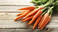 Ibu, Ini 7 Makanan Paling Sehat untuk MPASI (5 Second Studio/Shutterstock)