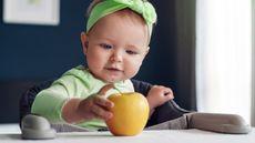 Ini Tips agar si Kecil Suka Makan Buah (Foxy Burrow/Shutterstock)