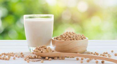 Susu Kedelai, Nutrisi Nabati yang Menyehatkan (somrak-jendee/shutterstock)