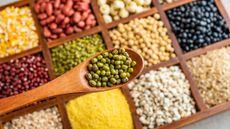 Catat, Ini 5 Sumber Protein Nabati Terbaik untuk Menu MPASI (HelloRF Zcool/Shutterstock)